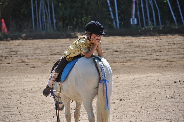 Horse, Animals, Show, Horseback Riding, Equine, Nature