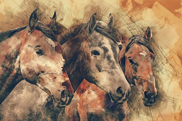Horses, Horse Head, Animals, Mammal, Nature, Equestrian