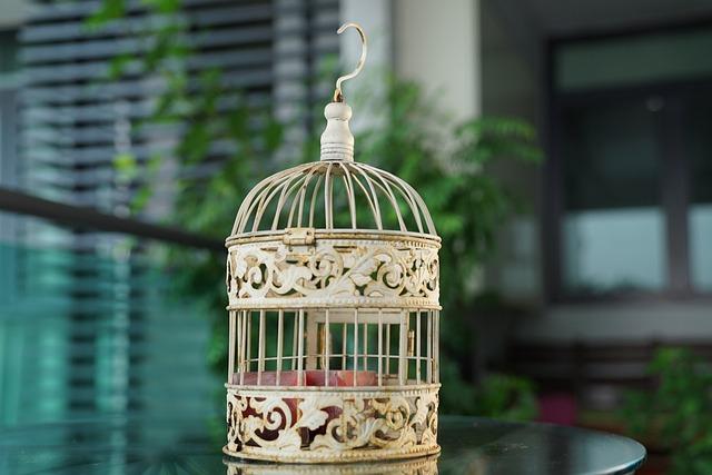 Bird Cage, Vintage, Decorative, Antique, Retro