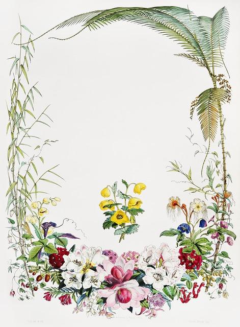 Desktop, Leaf, Flora, Flower, Nature, Antique, Blank