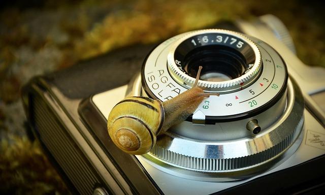 Camera, Old, Antique, Snail, Tape Worm, Lens, Nostalgia