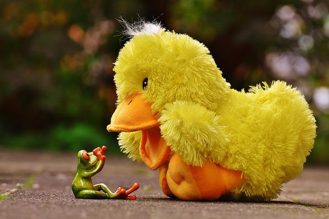 Frog, Anxious, Duck, Dangerous, Funny, Cute, Soft Toy