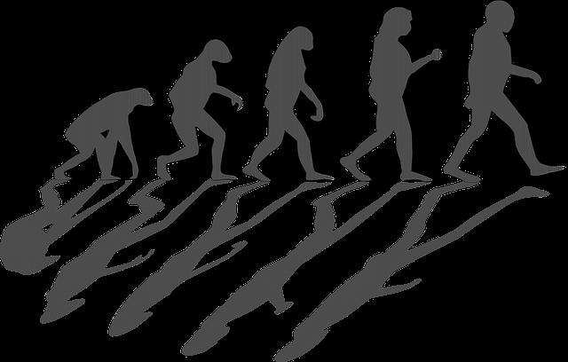 Evolution, Evolving, Mankind, Men, Ape, Human Darwin