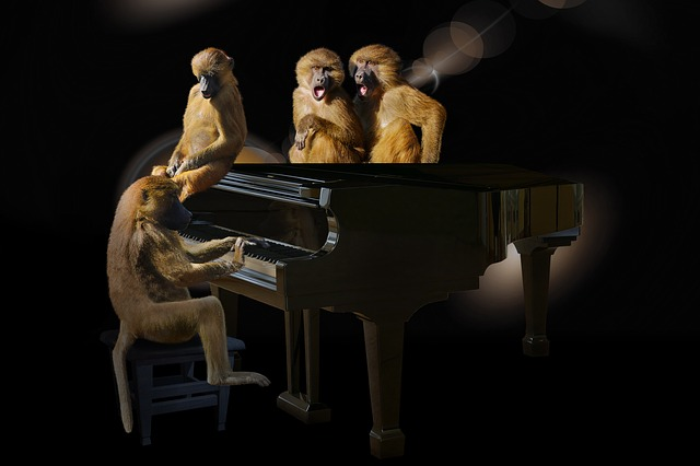 Animals, Ape, Baboons, Art, Music, Piano, Sing, Concert