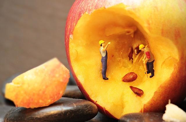 Refurbishment, Apple, Apple Cores, Miniature Figure