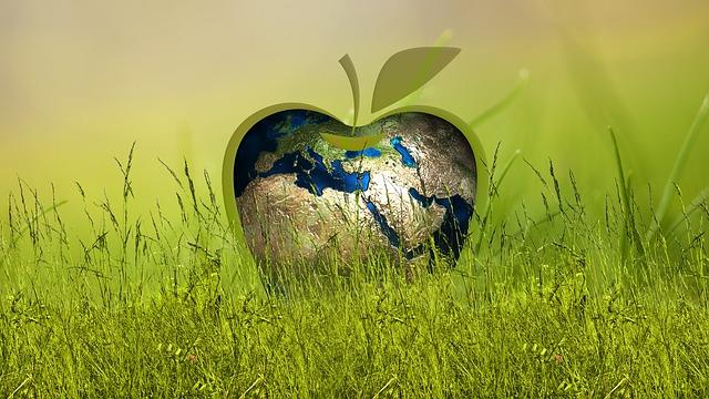 Sustainability, Energy, Apple, Globe, Grass, Meadow