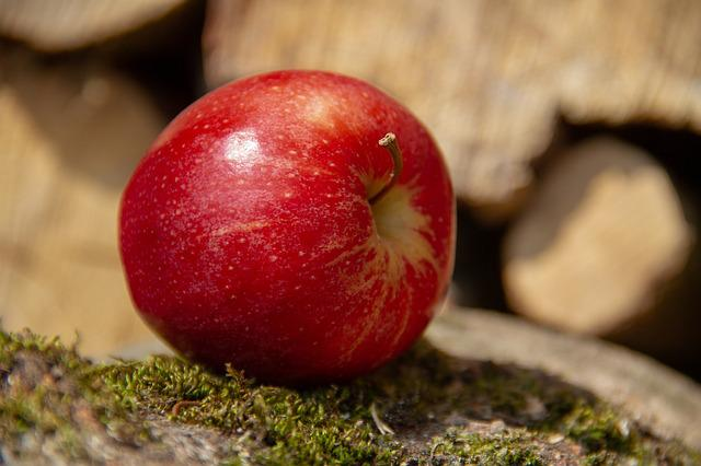 Apple, Fruit, Red, Food, Nature, Wood, Moss, Healthy