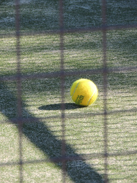 Tennis, Sport, Paddle, Ball, Track, Approach