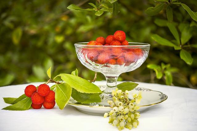 Arbutus, Flower, Winter Flower, Fruit, Red, Vitamin
