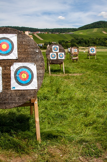 Target, Objectives, Archery, Meeting, Arch