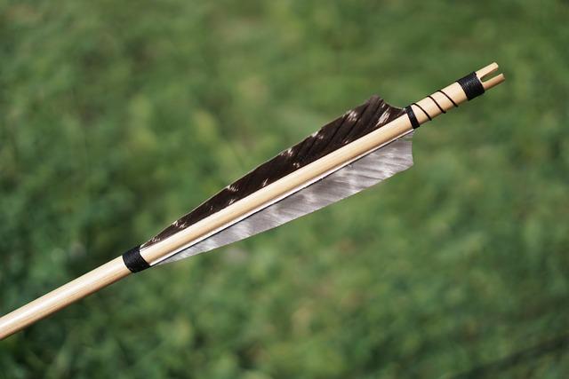 Arrow, Arrows, Bow And Arrow, Archery, Springs, Sports