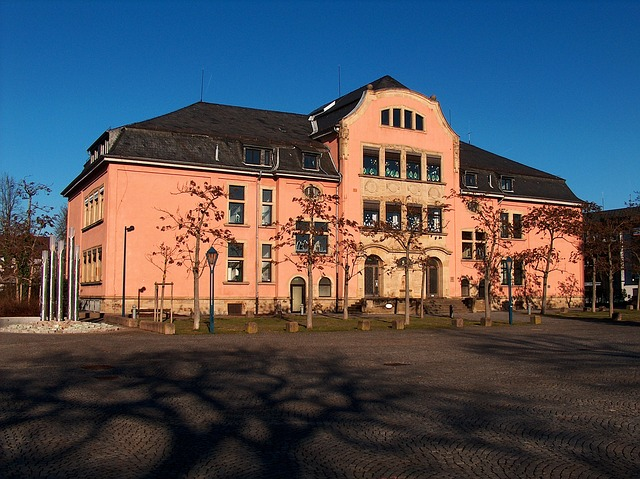 School, Building, Architecture, House, Hockenheim