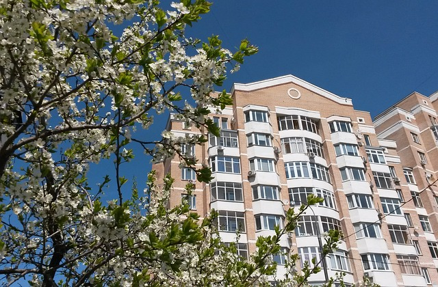 Moscow, Russia, Spring, Flowers, Architecture, Blue Sky