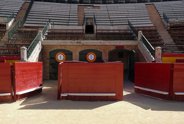 Spain, Arenas, Bullfight, Bullfighting