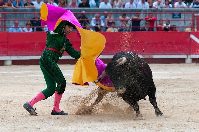 Bullfight, Toreador, Arenas, Beaucaire, Bulls