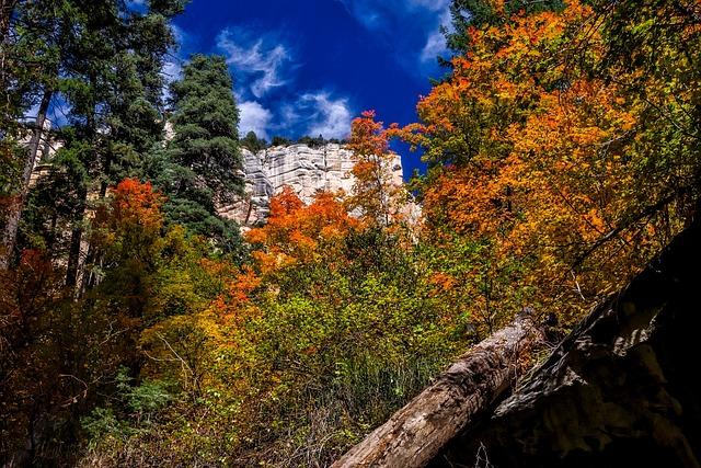 Arizona, Fall, Autumn, Colorful, Mountains, Landscape