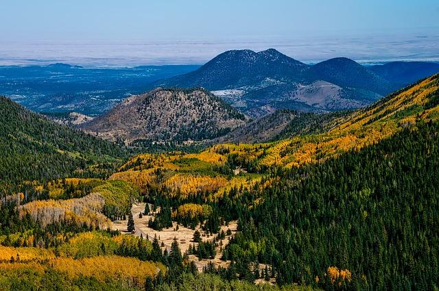 Arizona, Mountains, Fall, Autumn, Colorful, Meadow