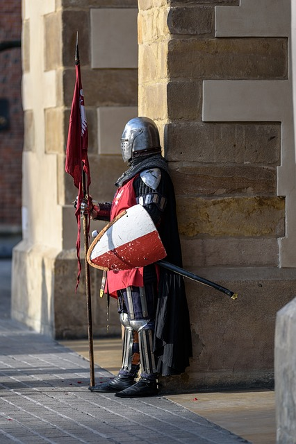 Knight, Armor, Armament, Shield, Ax, Warrior