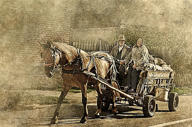 Horse, Farm Wagon, Old Couple, Art, Abstract, Vintage
