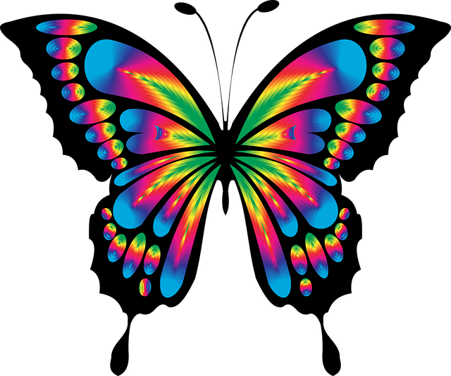 Abstract, Animal, Art, Butterfly, Chromatic, Colorful