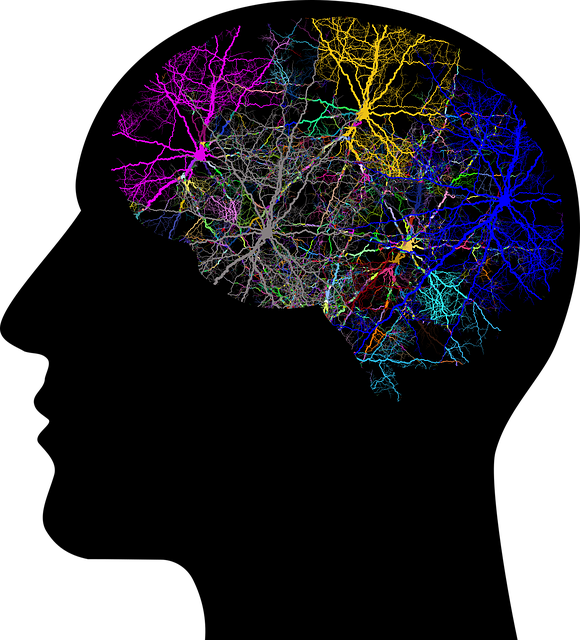 Cranium, Head, Lightning, Branching, Abstract, Art