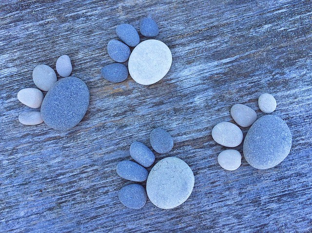 Rock, Stone, Art, Craft, Paw, Prints
