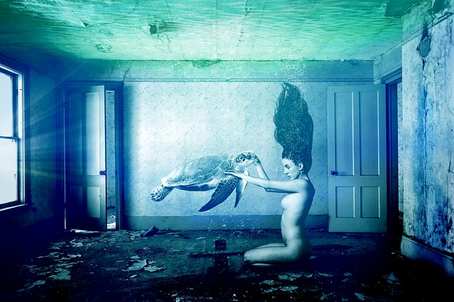 Woman, Water, Underwater, Room, Setting, Turtle, Art