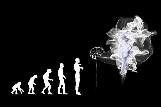 Evolution, Artificial Intelligence, Brain, Spirit