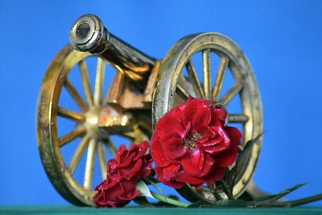 Rose, Flower, Cannon, Has Happened, Artillery, Caliber