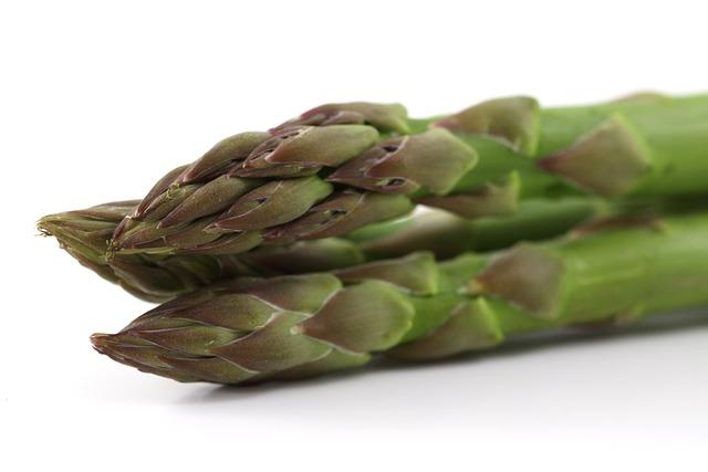 Appetite, Asparagus, Food, Green, Healthy, Meal, Stalk