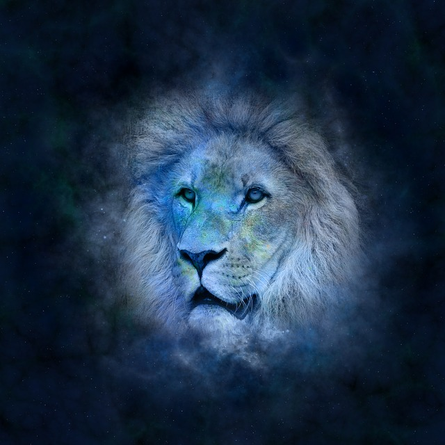 Horoscope, Astrology, Zodiac, Lion, Icon Images