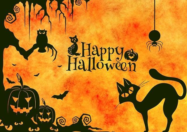 Halloween, Cat, Weird, Surreal, Atmosphere, Creepy