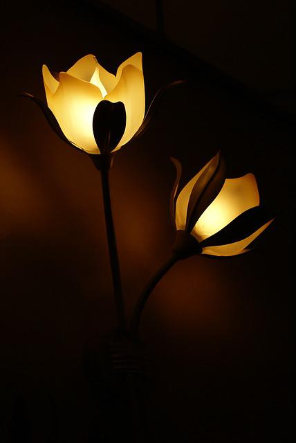 Lamp, Flower, Light, Lamps, Lighting, Dark, Atmosphere