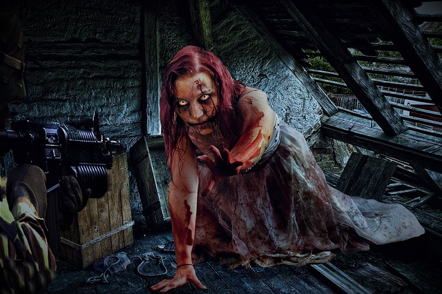 Zombie, Woman, Soldier, Attic, Horror, Undead, Female