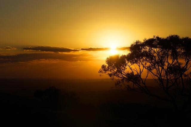 Australia, Outback, New South Wales, Bush, Farmland