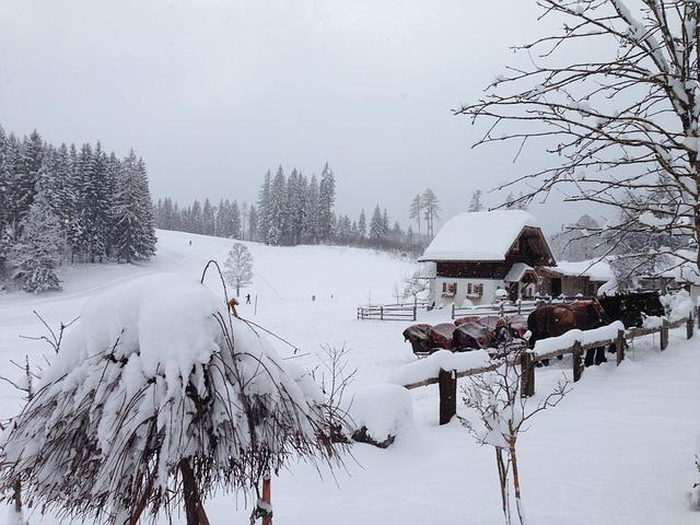 Austria, Styria, Ramsau, Dachstein, Winter, Snowfall