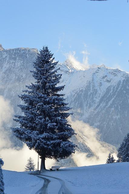 Winter, Snow, Sautens, Haderlehn, Tyrol, Austria