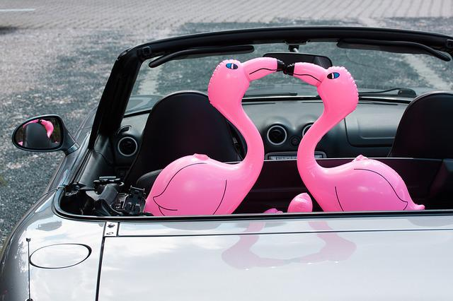Flamingo, Inflatable, Pink, Romantic, Lovers, Auto