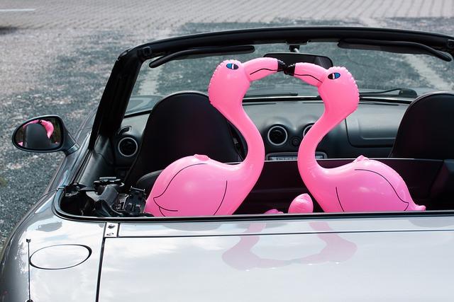 Flamingo, Inflatable, Pink, Romantic, Lovers, Auto