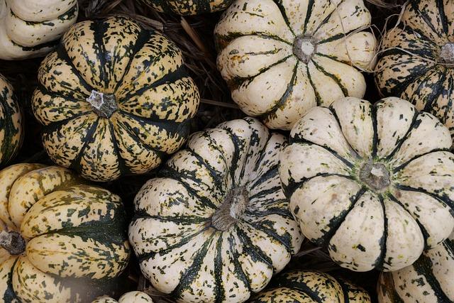 Pumpkin, Autumn, Fruits, Choose, Autumn Decoration