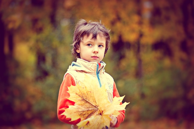 Park, Autumn, Autumn Park, Boy, Baby, Autumn Leaves