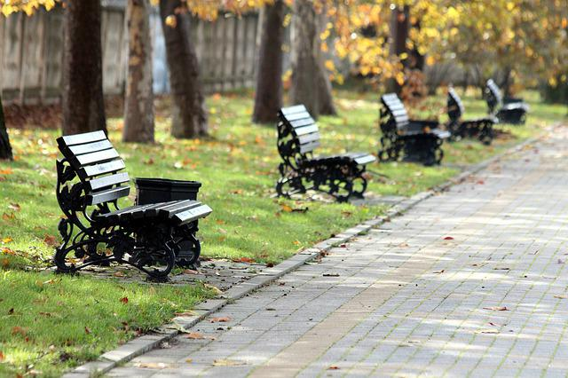 Park, Benches, Autumn, Outdoors, Pavement, Paving Stone