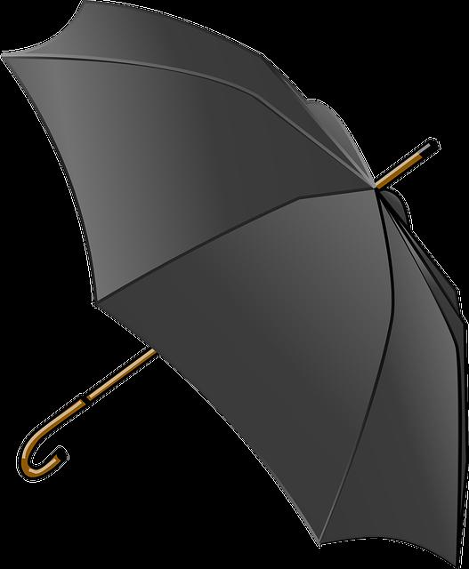 Umbrella, Tool, Weather, Canopy, Rain, Autumn, Black