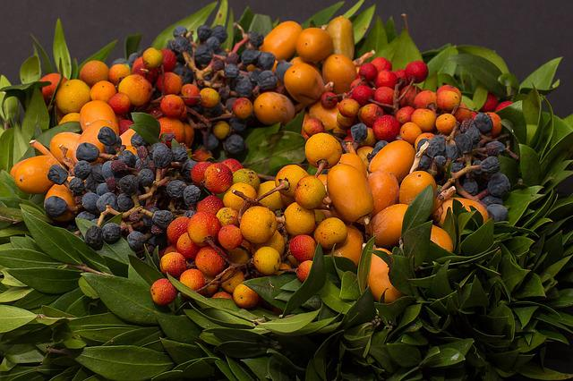 Berries, Autumn, Autumn Wreath, Bouquet, Flowers