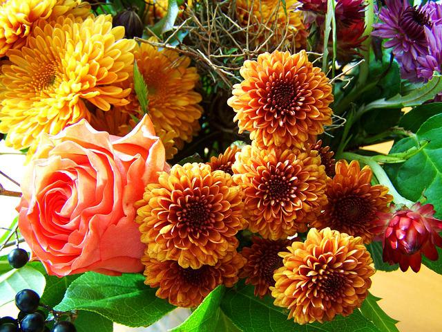 Bunch Of Flowers, Autumn Colors, Cut Flower