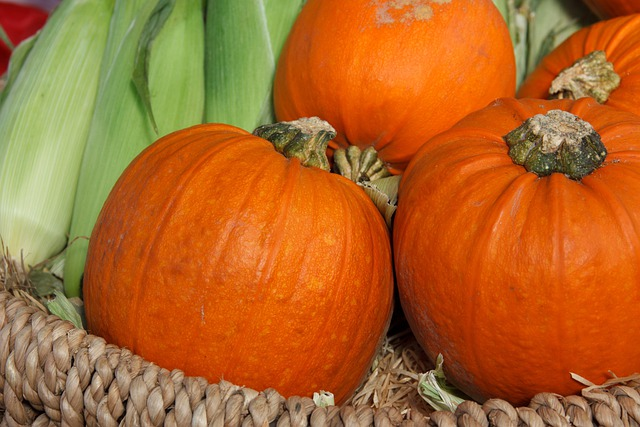 Autumn, Basket, Colorful, Corn, Fall, Food, Fresh