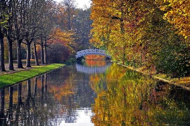 Autumn, Castle Park, Fall Leaves