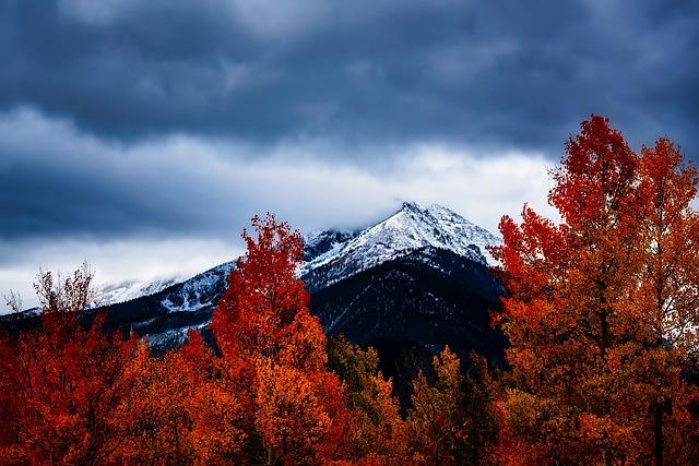 Colorado, Fall, Autumn, Colors, Landscape, Mountains