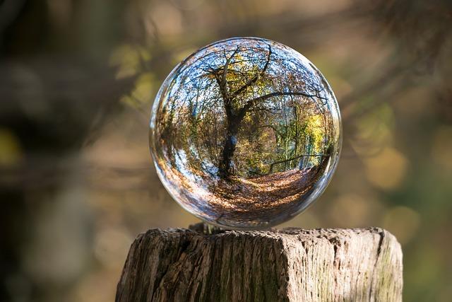 Glass Ball, Autumn, Tree, Gnarled, Globe Image