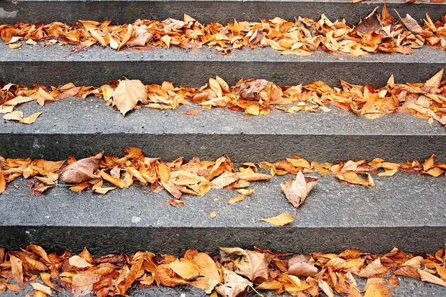 Stairs, Autumn Gold, Dry Leaves, Yellow, Autumn, Spacer